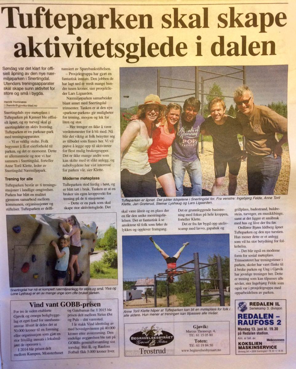 TufteparkenGjøvikBlad