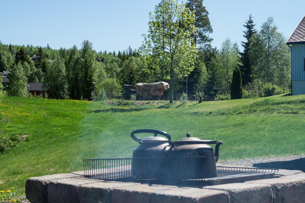 tufte-apning-20160605-13